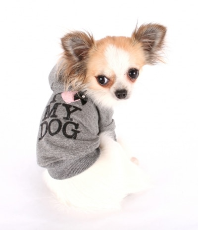 I Love My Dog Sweat à capuche glamour pour chihuahua