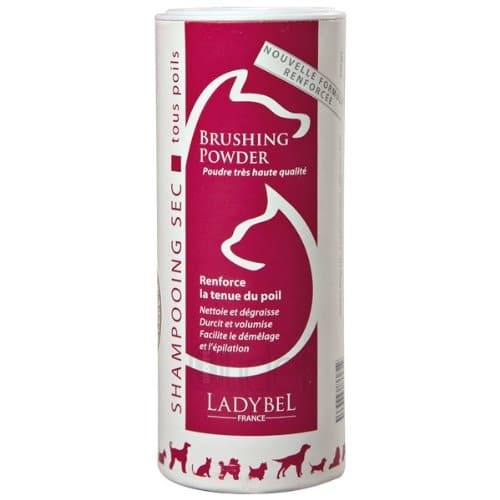 Shampoing lady brushing powder