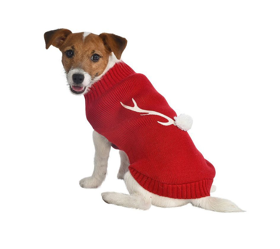 Pull Chien Noel Christmas dog sweater, red   Dandy's Pet