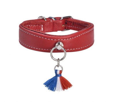 Collier pour chien Bercy made in france, cuir rouge
